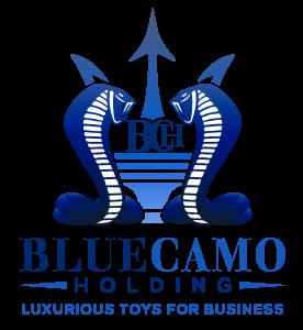 Blue Camo Holding